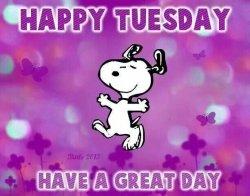Happy-Tuesday.jpg
