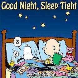 Good Night Peanuts.jpg