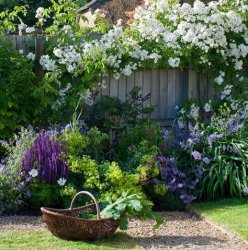 afefb15a32a5faae116a25156022d223--small-english-garden-english-country-gardens.jpg