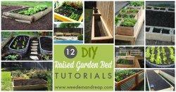 12-DIY-Raised-Garden-Bed-Tutorials-1.jpg
