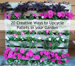 20-Creative-Ways-to-Upcycle-Pallets-in-your-Garden-wm-label-600.jpg