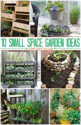 14623e5ba5f2d2371f3121714c4d2bea--small-garden-spaces-small-space-gardening.jpg