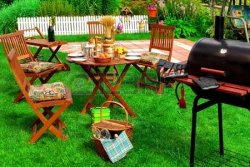 40690802-backyard-summer-bbq-cocktail-party-or-picnic-on-the-lavn-scene-and-concept.jpg