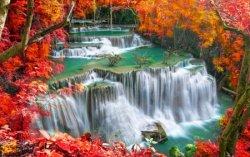 fall 16.jpg