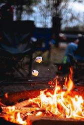 00728_Campfire-Marshmallow-Smores-1_LR__DSC8828.jpg