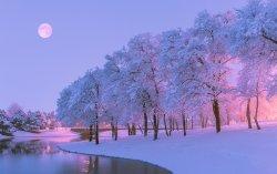 Beautiful-winter-snow-trees-river-moon-dusk_2560x1600.jpg
