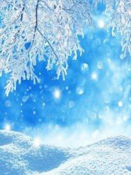 winter - 11.jpg