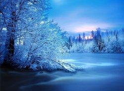 winter - 25.jpg