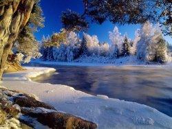 winter 7.jpg