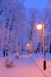 schone-winterbilder-fur-handys-30-min.jpg