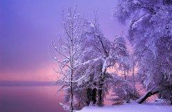 winter-landscapes-8.jpg