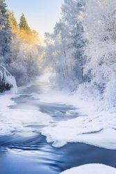 winter sc 1.jpg