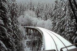 snowtrain4.jpg