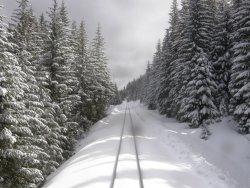 train-snow-dsz.jpg
