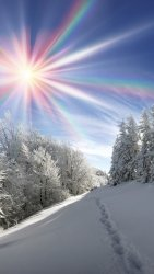 Winter-thick-snow-trees-sun-rays-rainbow-colors_iphone_1080x1920.jpg