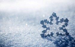snowflake-ice-snow-winter-720P-wallpaper.jpg