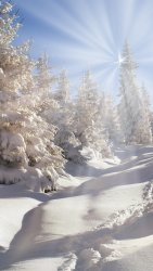 Winter-thick-snow-trees-forest-sun-rays_iphone_1080x1920.jpg