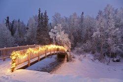bridge-decorated-with-christmas-lights-jeff-schultz.jpg
