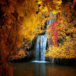 fall-gold-and-red-waterfall.jpg