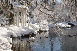 Morris_snow_Paul-Meyer.jpg