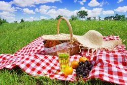 5-Ways-a-Summer-Picnic-Supports-Your-Health.jpg