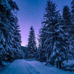 Best-Winter-Photos.jpg
