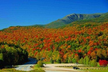 Fall-Foliage_54_990x660.jpg