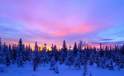 content_c6-Image-by-Jeanne_-of-JLS-Photography---Alaska.-Snowy-sunrise.jpg