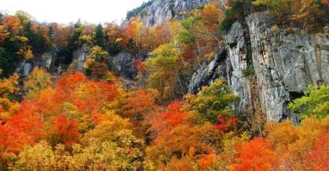 fall-foliage-crawford-notch-new-hampshire.jpg