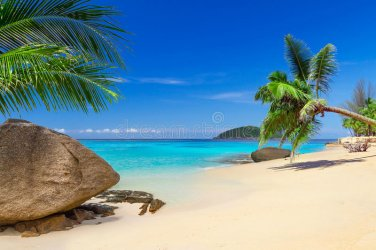 tropical-beach-scenery-thailand-35887151.jpg