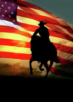 americana-patriotic-country-western-american-flag-stephanie-laird.jpg