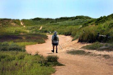 Great-Island-Trail-Wellfleet.jpg