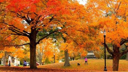fall-foliage-2018-northeast-massachusetts-getty-images_copy.jpg