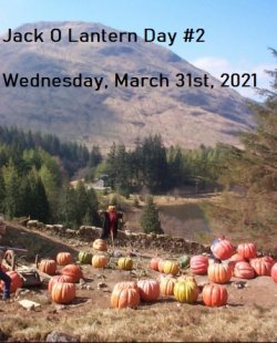 Jack O Lantern Day #2.jpg