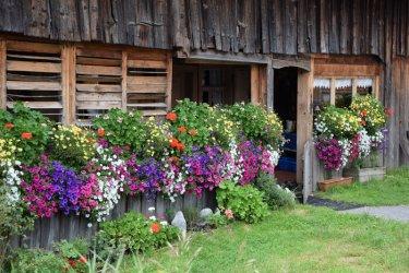 Log-Cabin-Garden-.jpg