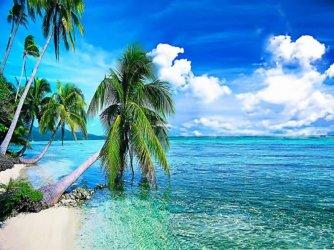 summer-tropical-beach-with-palmi-backgrounds.jpg