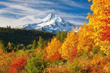 autumn-foliage-mount-hood-scenic-byway-oregon-USAFOLIAGE0918.jpg
