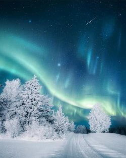 winter pic 5.jpg