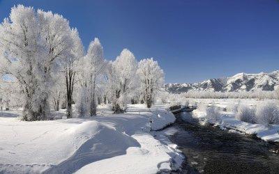 0064a-winter2.jpg