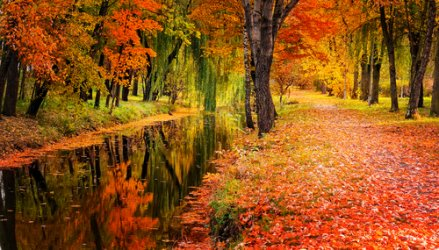 lakelovers-autumn.jpg