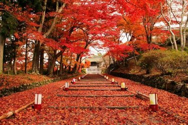 bishamon-do-temple-kyoto-bishamon-do-temple_adobestock_90550934.jpg