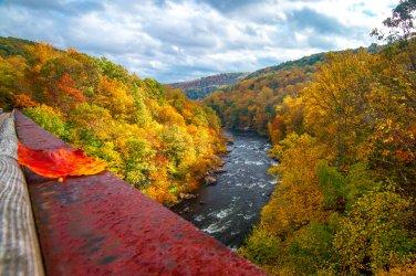 Kurt_Miller_High_Bridge_Ohiopyle_PA_smaller_52b86887-6bba-4be5-b829-c9f5f22a375e.jpg