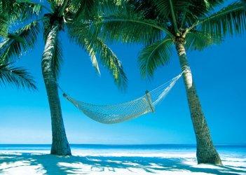 paradise-hammock-i8013.jpg