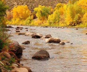 Animas_River_Durango_Fall_Colors_a1da51c7-67be-4646-a5a1-758a2152456a.jpg