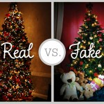 Christmas Debate: Real or Artificial?