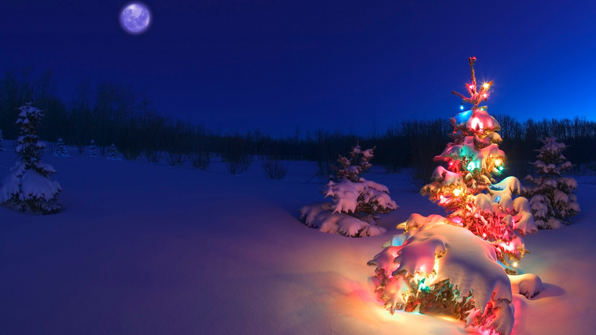 White Christmas Predicted Widely in 2015
