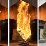 How Fast Does a Christmas Tree Burn?