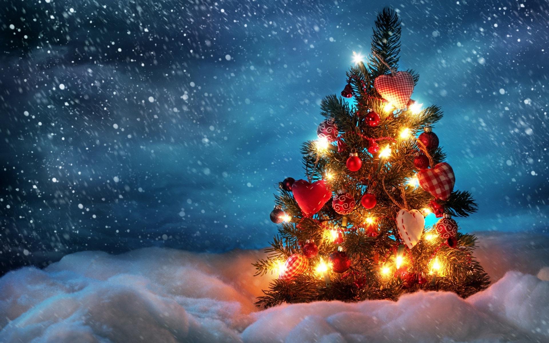 beautiful-christmas-tree-design-inspiration-on-ideas-design-inspirational