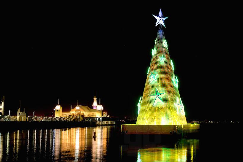 An Australian Christmas Tree
